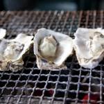 牡蠣の栄養と食べ過ぎの関係は?ノロウイルスは大丈夫?
