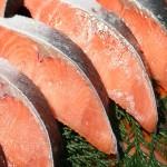 時鮭は北海道が絶品!美味しさの理由は?栄養なども紹介!