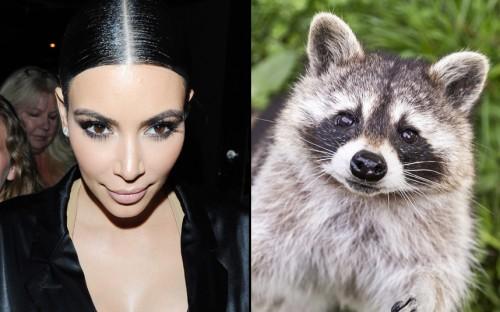 Kim-Kardashian-loo_3553320k